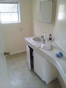 7951 Hart Rd bath