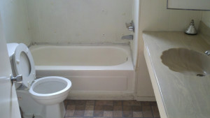 8156 Everhart bath